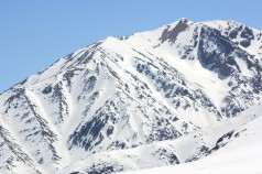 Chile: Colorado y el pisco sagüer en la nieve