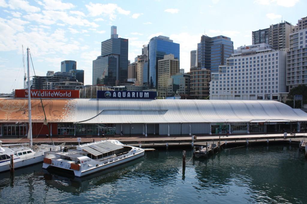 sydney aquarium and sydney wildlife world