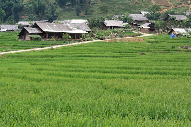 La aldea de Ta Van (Sapa - Vietnam)