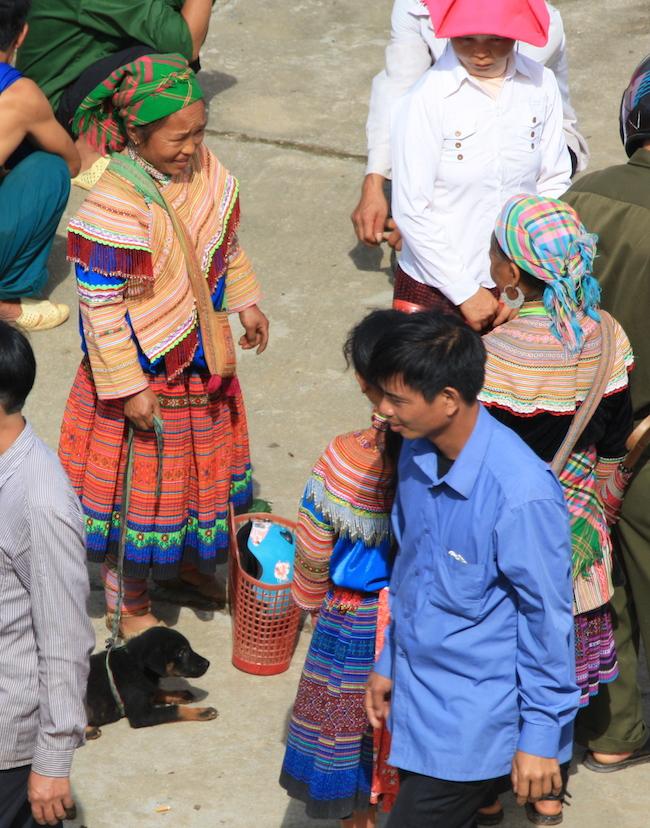 Cachorro a la venta en el mercado de Bac Ha (Vietnam)