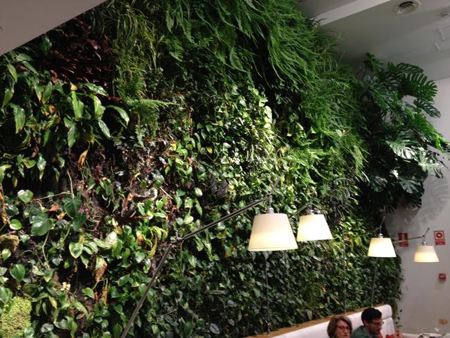 El jardín vertical del interior tienes que verlo