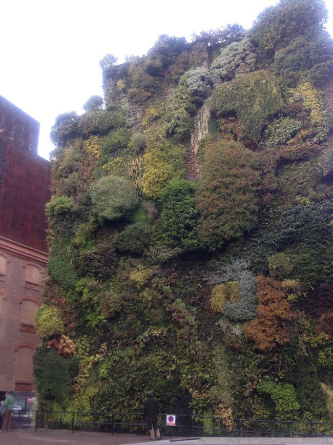Jardín vertical frente al Caixaforum de Madrid