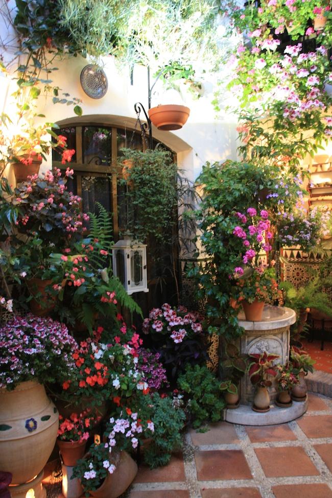 Otro ejemplo de patio en casa moderna