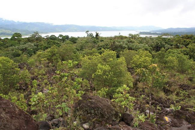 Vistas del lago Arenal desde las coladas de lava del volcán