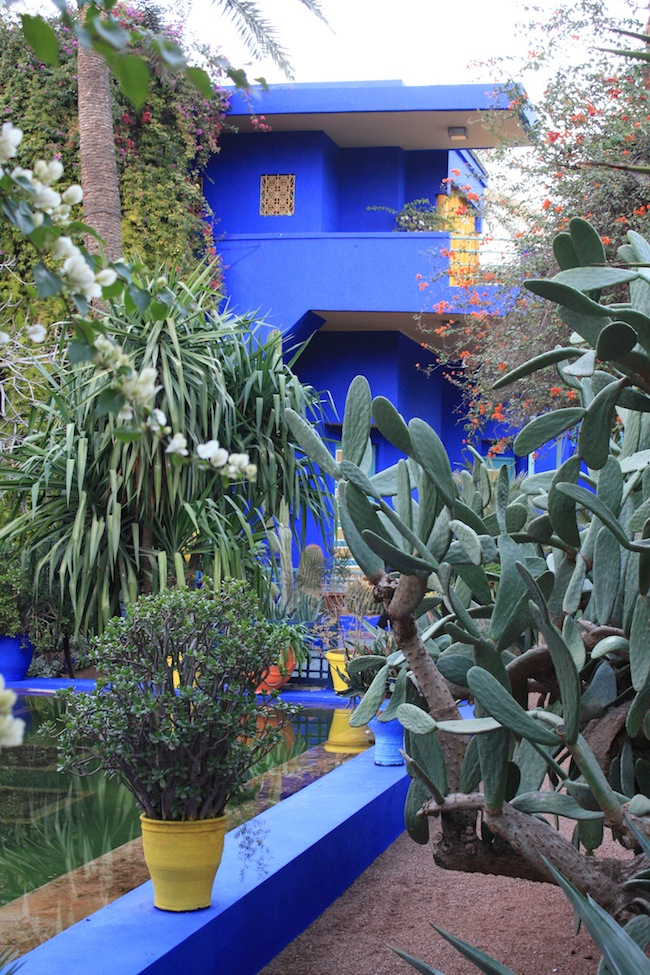 El contraste verdiazul del Jardín Majorelle