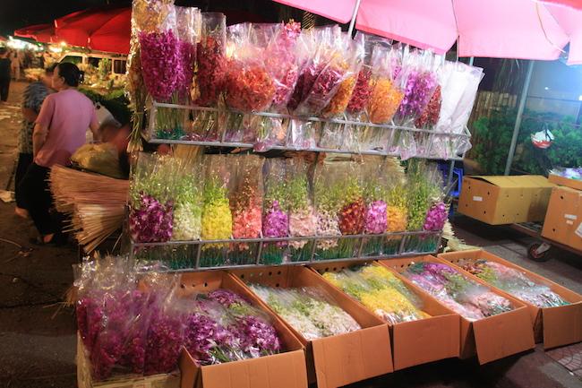 Orquídeas de todos los colores...