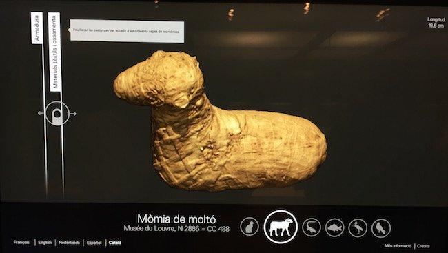 Tomografía computerizada para el estudio de las momias
