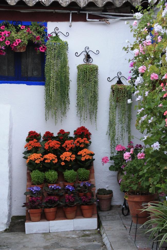 Detalle del patio de Marroquíes 6