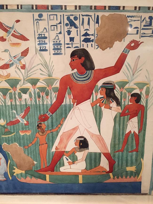 pajaros animales y faraones