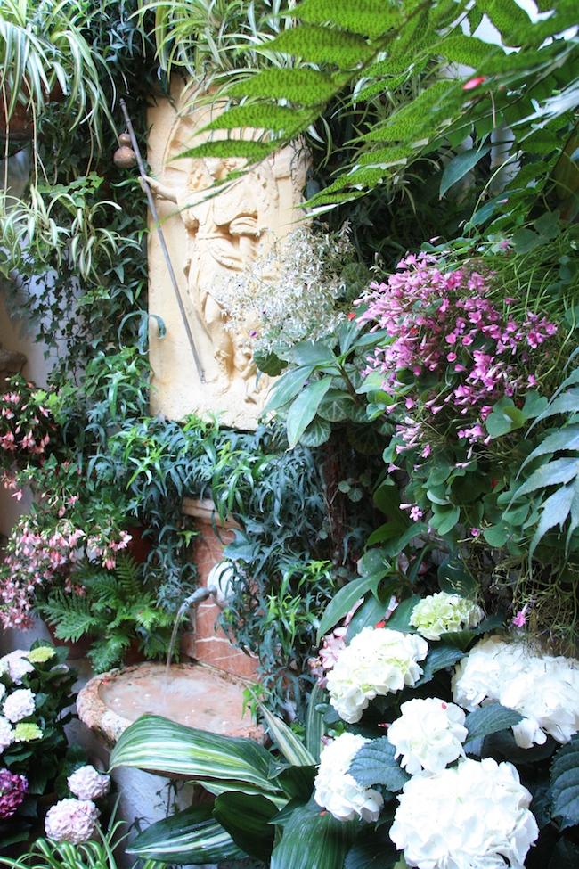 Gabriel y su esposa cuidan de este bello patio, donde cobra protagonismo una imagen de San Rafael, custodiada por helechos de una especie prehistórica.
